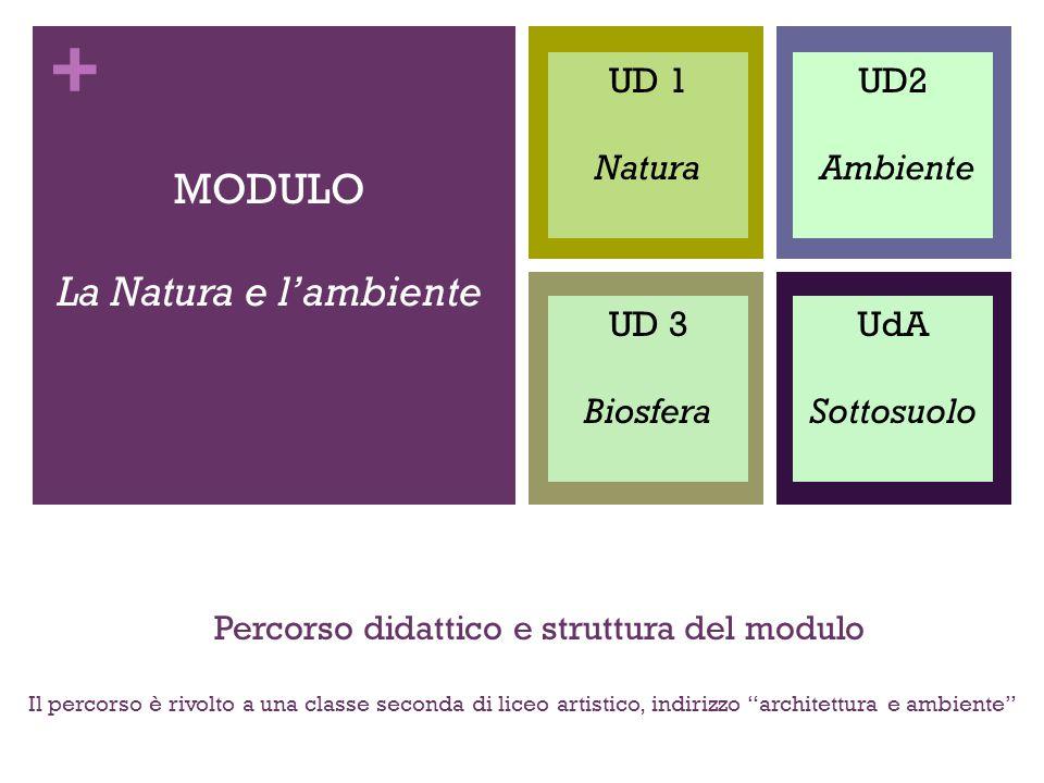 Percorso didattico e struttura del modulo