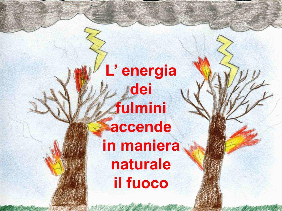 L' energia dei fulmini accende in maniera naturale il fuoco