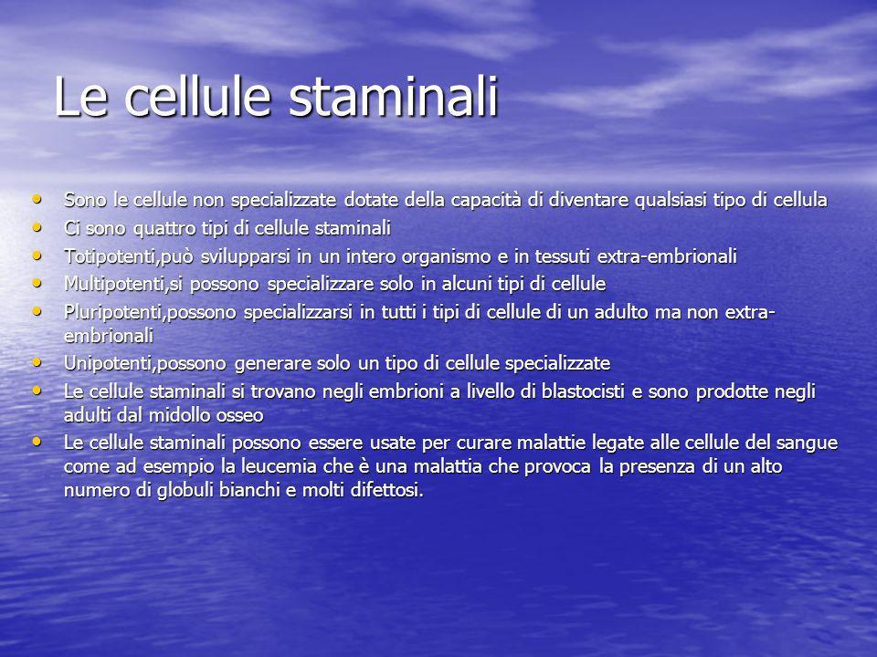 Le cellule staminali Sono le cellule non specializzate dotate della capacità di diventare qualsiasi tipo di cellula.