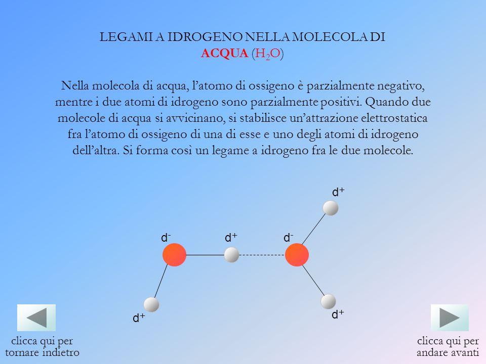 LEGAMI A IDROGENO NELLA MOLECOLA DI ACQUA (H2O)