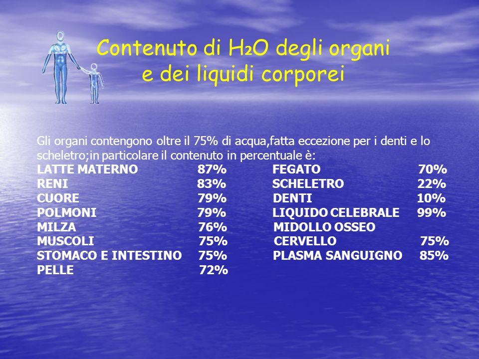 Contenuto di H2O degli organi e dei liquidi corporei
