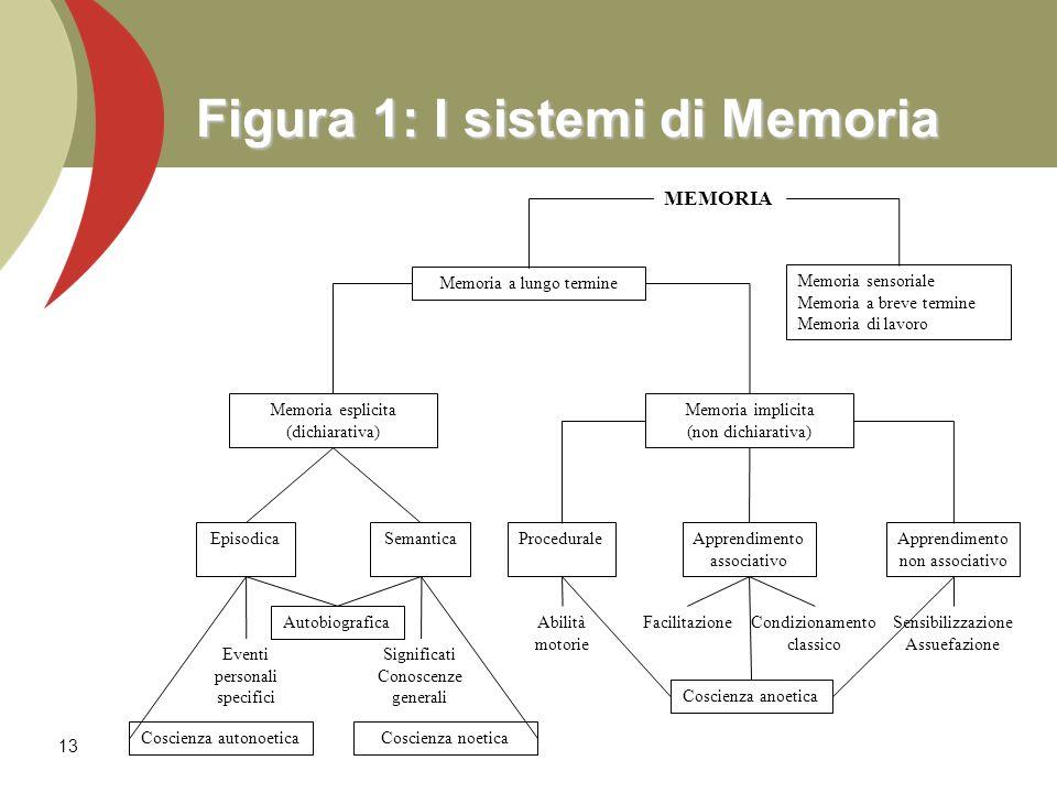 Figura 1: I sistemi di Memoria