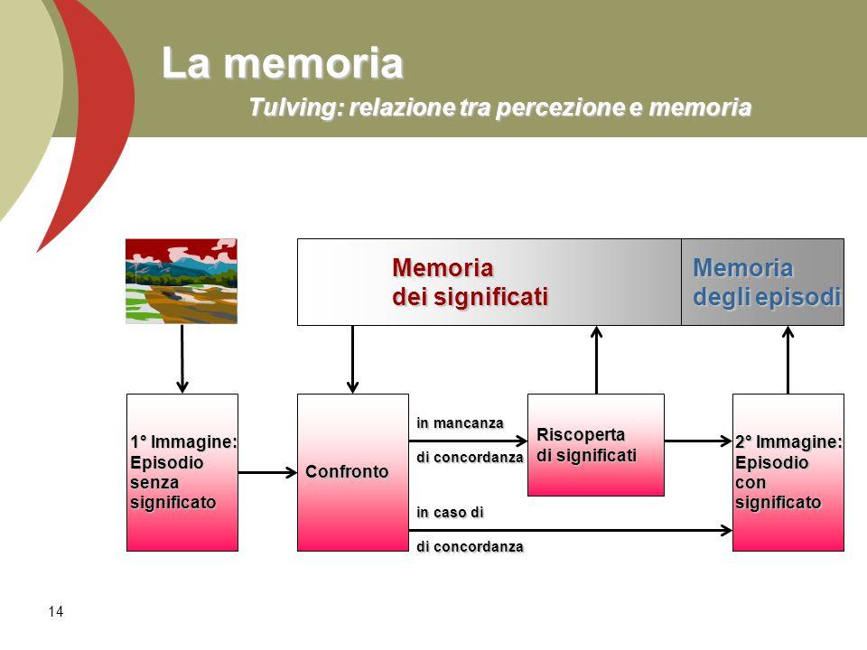 La memoria Tulving: relazione tra percezione e memoria