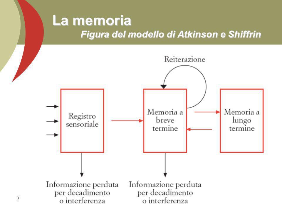 La memoria Figura del modello di Atkinson e Shiffrin