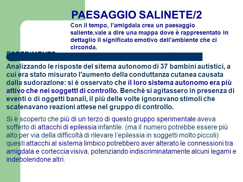 PAESAGGIO SALINETE/2 ESPERIMENTO: