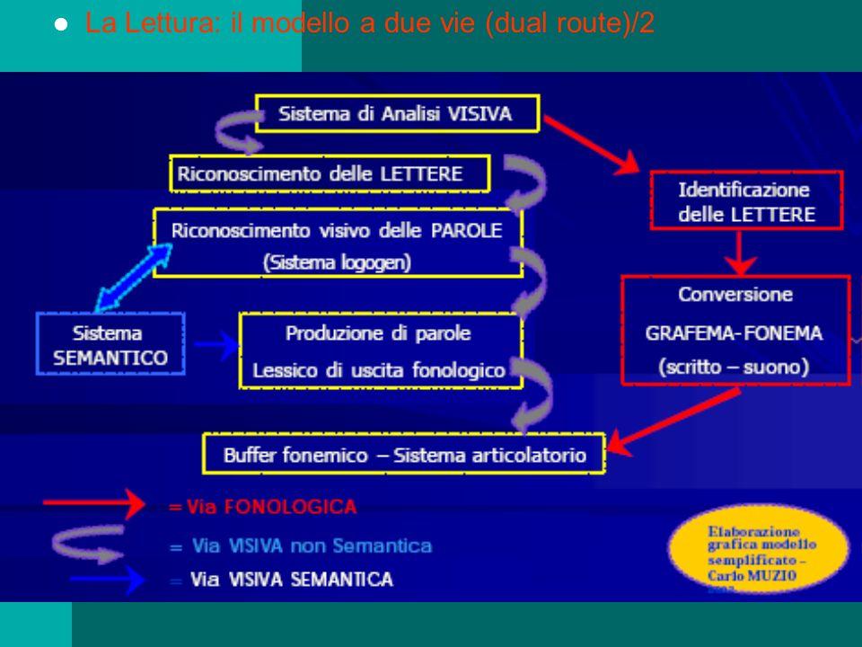 La Lettura: il modello a due vie (dual route)/2
