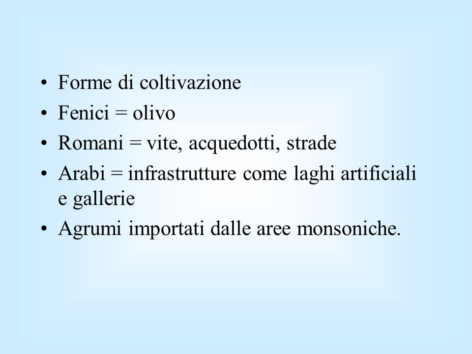 Forme di coltivazione Fenici = olivo. Romani = vite, acquedotti, strade. Arabi = infrastrutture come laghi artificiali e gallerie.