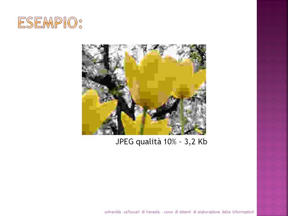 Esempio: JPEG qualità 10% - 3,2 Kb