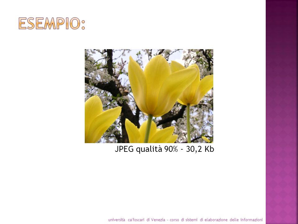 Esempio: JPEG qualità 90% - 30,2 Kb