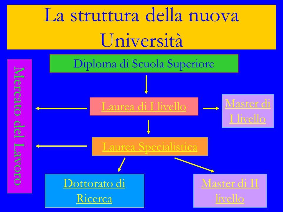 La struttura della nuova Università