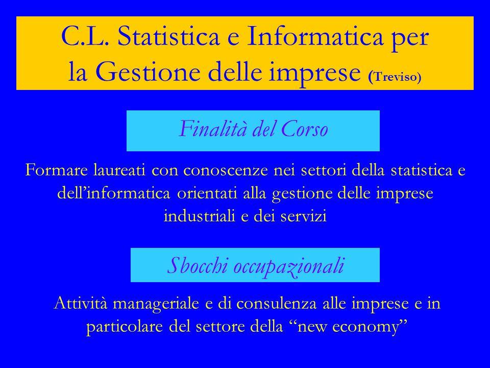 C.L. Statistica e Informatica per la Gestione delle imprese (Treviso)