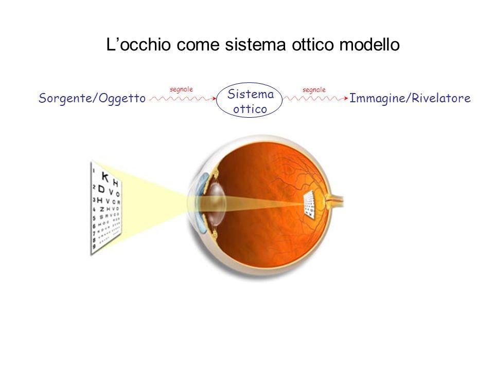L'occhio come sistema ottico modello