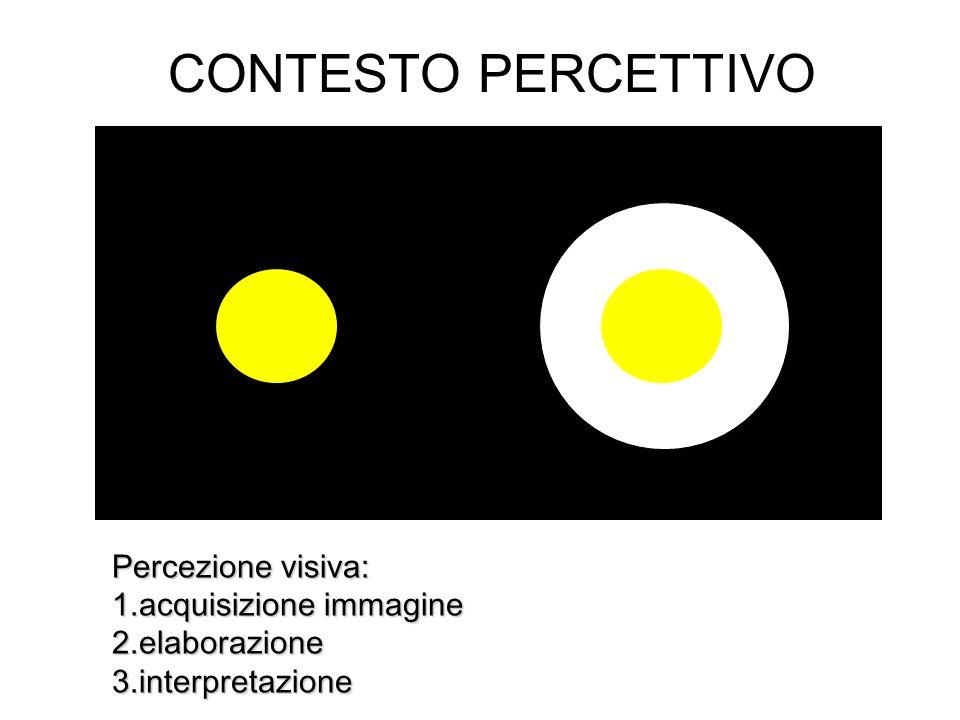 CONTESTO PERCETTIVO Percezione visiva: 1.acquisizione immagine