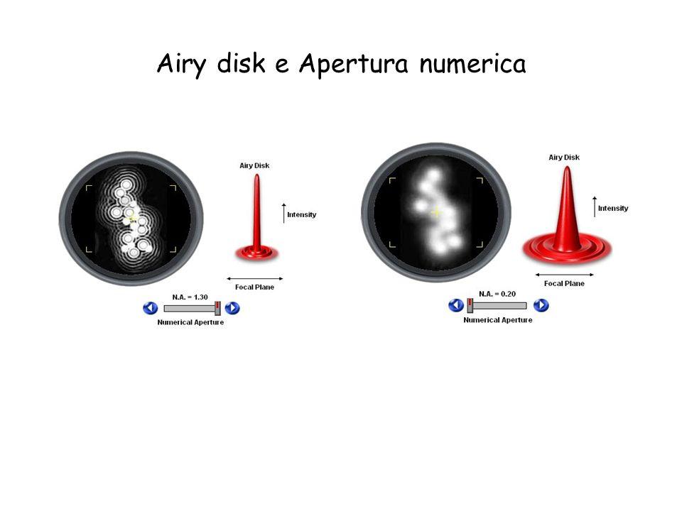 Airy disk e Apertura numerica