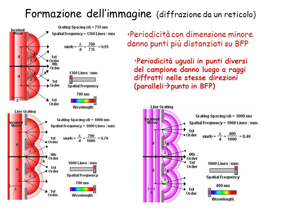 Formazione dell'immagine (diffrazione da un reticolo)