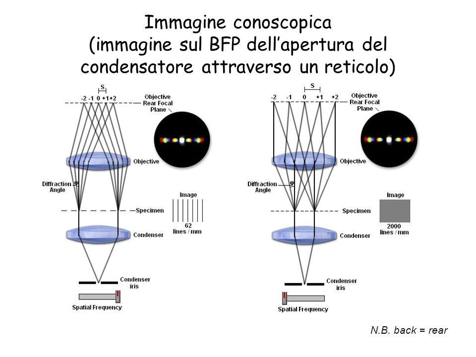Immagine conoscopica (immagine sul BFP dell'apertura del condensatore attraverso un reticolo)