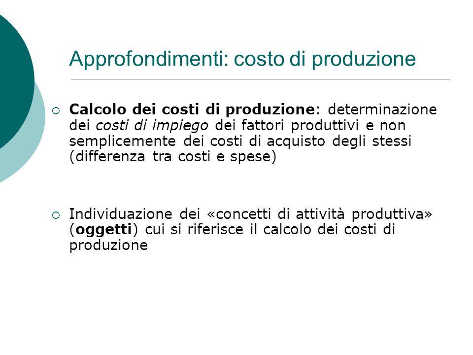 Approfondimenti: costo di produzione