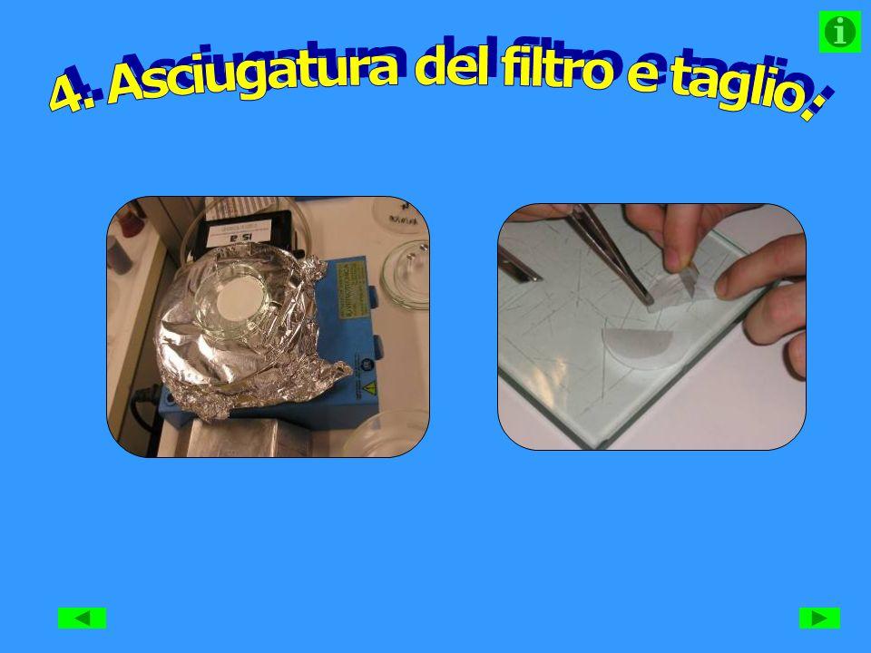 4. Asciugatura del filtro e taglio: