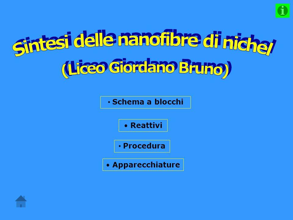 Sintesi delle nanofibre di nichel (Liceo Giordano Bruno)