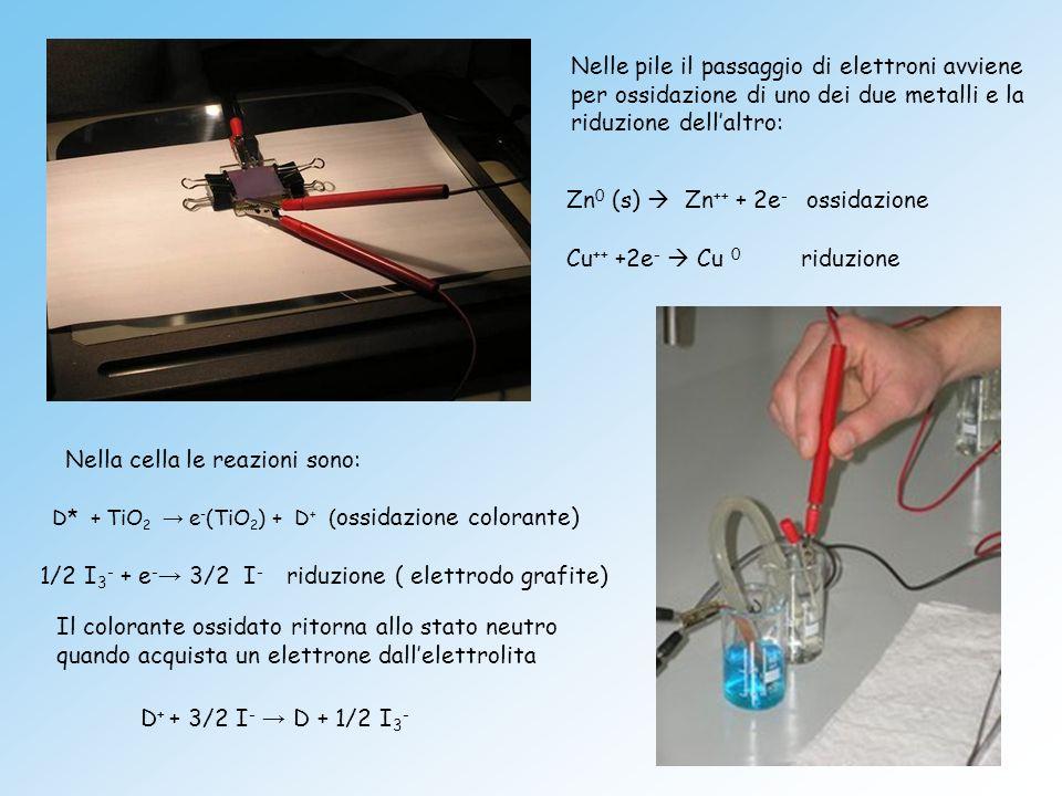 Zn0 (s)  Zn++ + 2e- ossidazione