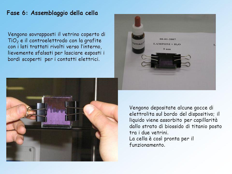 Fase 6: Assemblaggio della cella