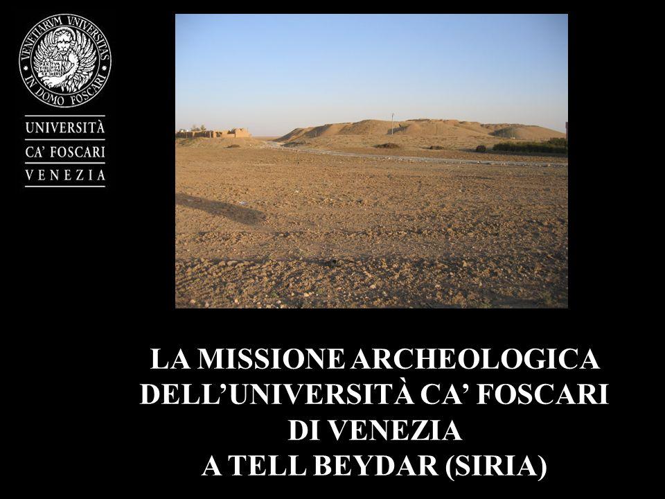 LA MISSIONE ARCHEOLOGICA DELL'UNIVERSITÀ CA' FOSCARI
