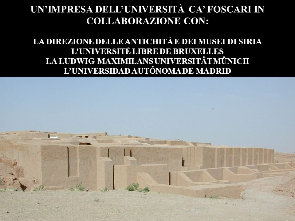 UN'IMPRESA DELL'UNIVERSITÀ CA' FOSCARI IN COLLABORAZIONE CON:
