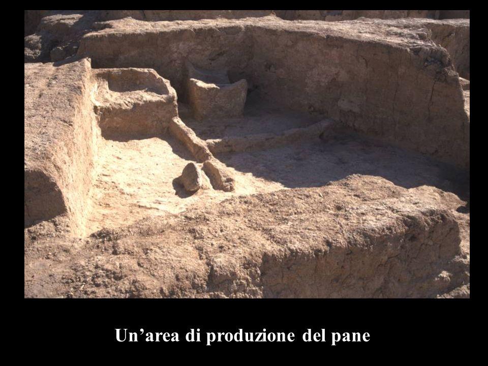 Un'area di produzione del pane