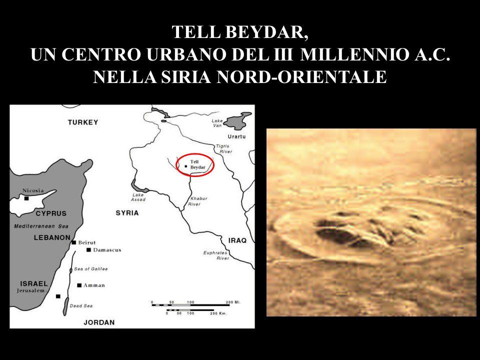 UN CENTRO URBANO DEL III MILLENNIO A.C. NELLA SIRIA NORD-ORIENTALE