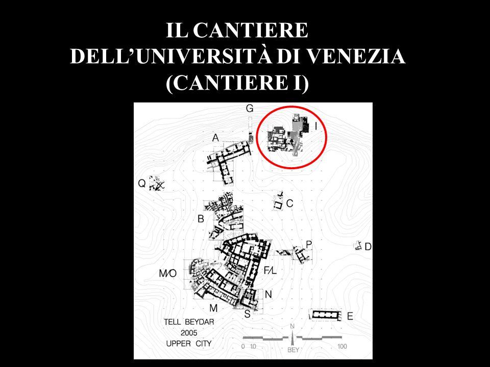 DELL'UNIVERSITÀ DI VENEZIA (CANTIERE I)
