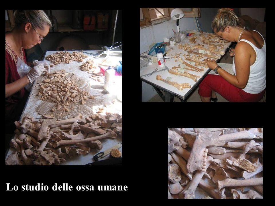 Lo studio delle ossa umane