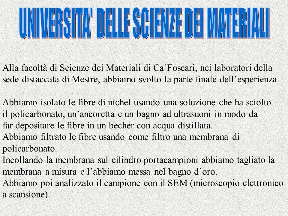 UNIVERSITA DELLE SCIENZE DEI MATERIALI