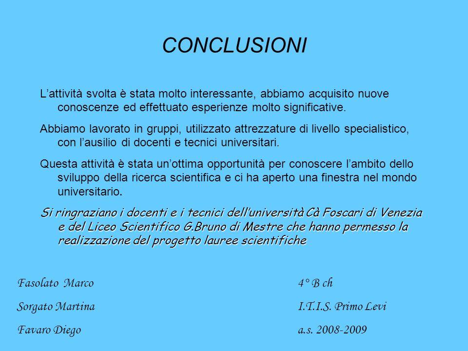 CONCLUSIONI Fasolato Marco 4° B ch Sorgato Martina I.T.I.S. Primo Levi