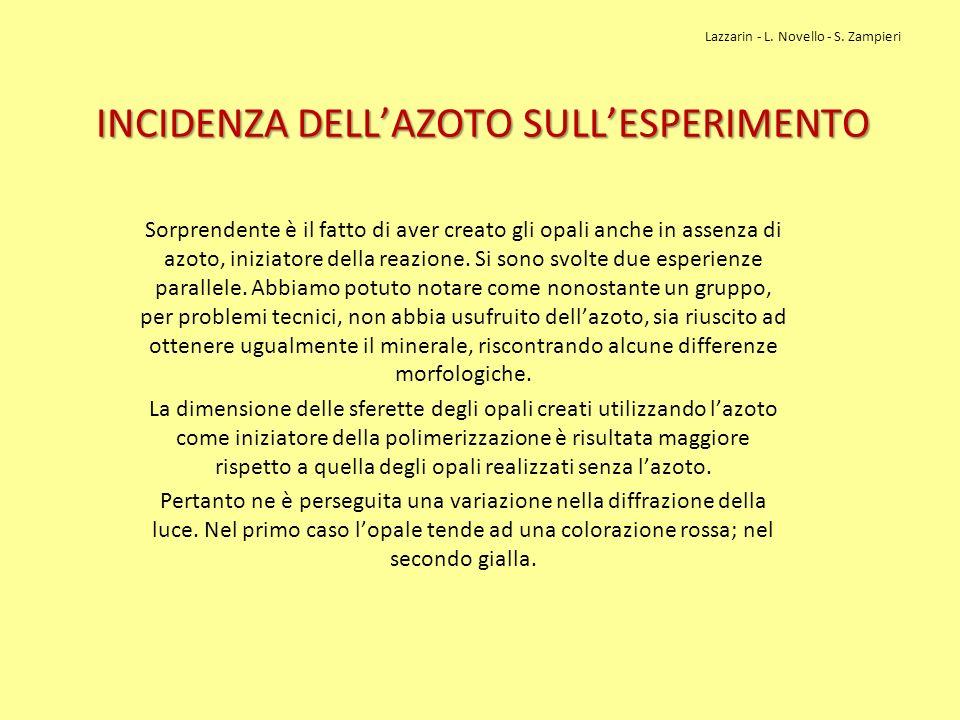 INCIDENZA DELL'AZOTO SULL'ESPERIMENTO