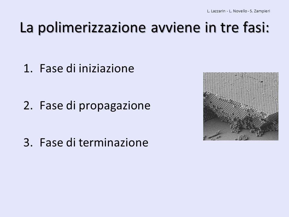 La polimerizzazione avviene in tre fasi: