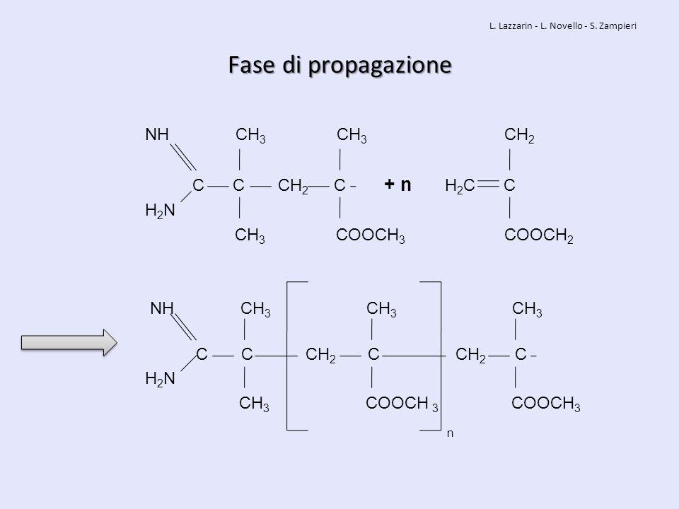 Fase di propagazione NH CH3 CH3 CH2 C C CH2 C + n H2C C H2N