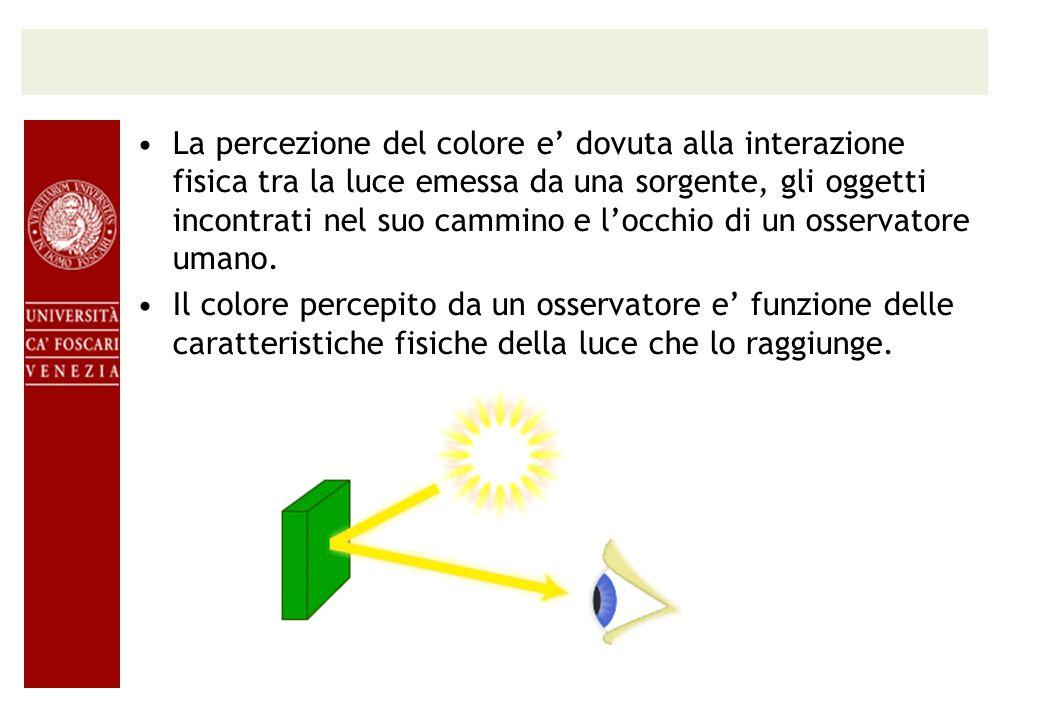 La percezione del colore e' dovuta alla interazione fisica tra la luce emessa da una sorgente, gli oggetti incontrati nel suo cammino e l'occhio di un osservatore umano.