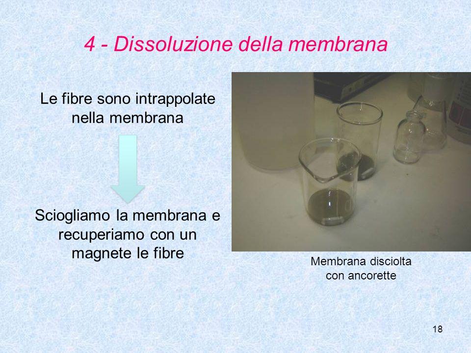 4 - Dissoluzione della membrana