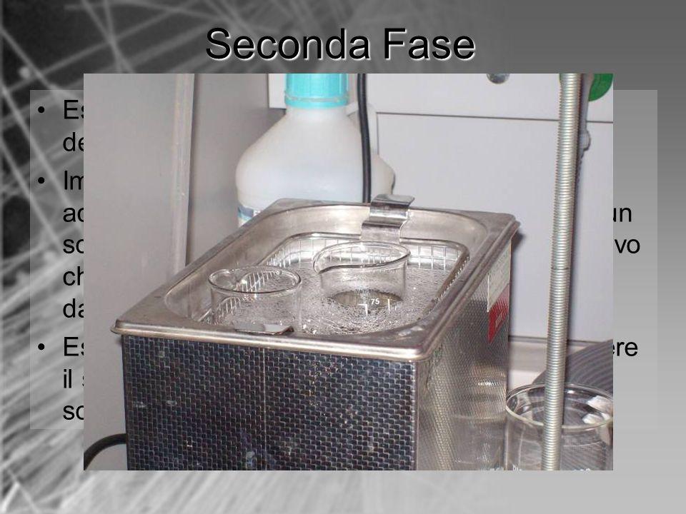 Seconda Fase Estrarre l'ancoretta e attendere l'evaporazione del diclorometano rimasto;