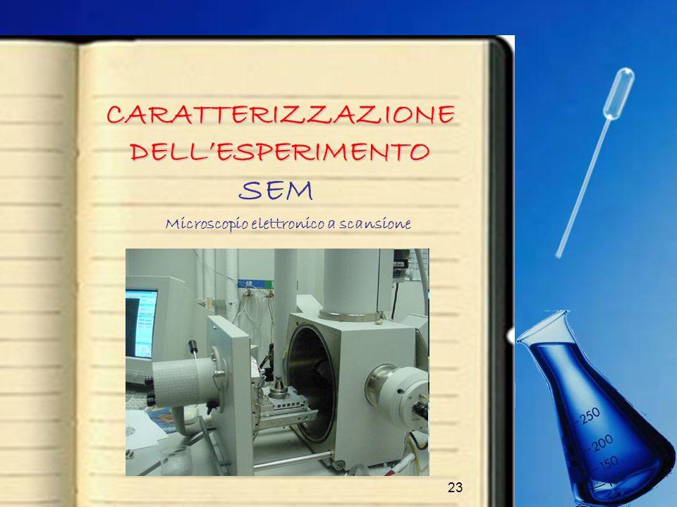 CARATTERIZZAZIONE DELL'ESPERIMENTO Microscopio elettronico a scansione