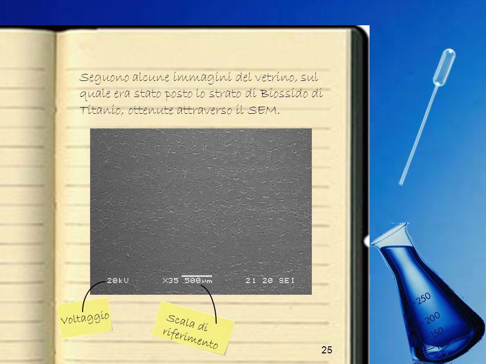 Seguono alcune immagini del vetrino, sul quale era stato posto lo strato di Biossido di Titanio, ottenute attraverso il SEM.