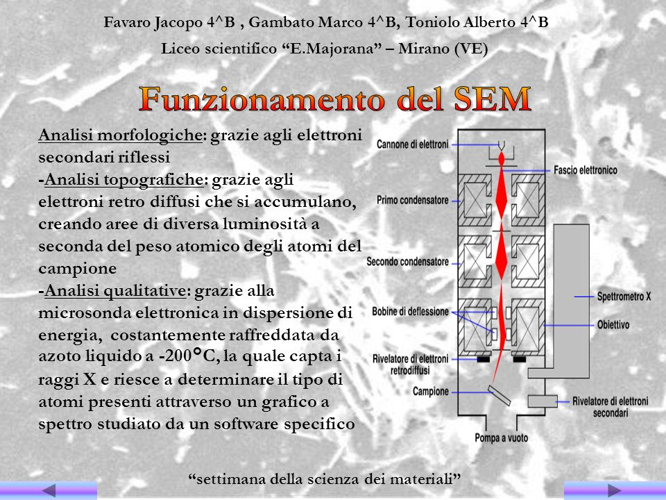 Favaro Jacopo 4^B , Gambato Marco 4^B, Toniolo Alberto 4^B