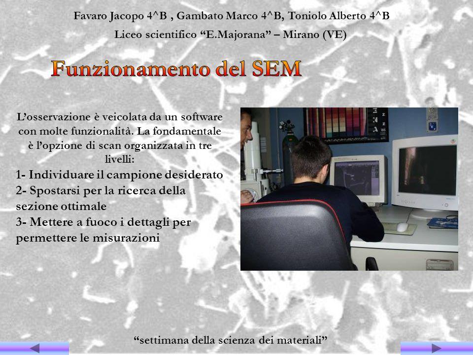Funzionamento del SEM 1- Individuare il campione desiderato