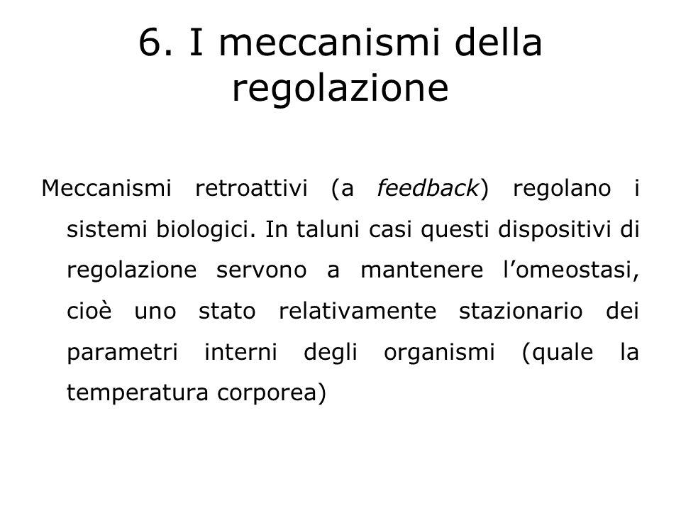 6. I meccanismi della regolazione
