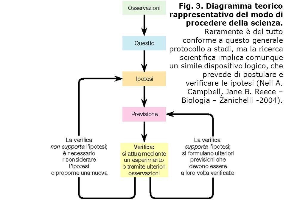 Fig. 3. Diagramma teorico rappresentativo del modo di procedere della scienza.