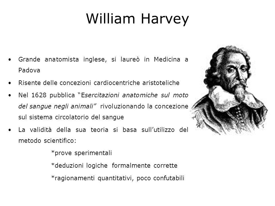 William Harvey Grande anatomista inglese, si laureò in Medicina a Padova. Risente delle concezioni cardiocentriche aristoteliche.