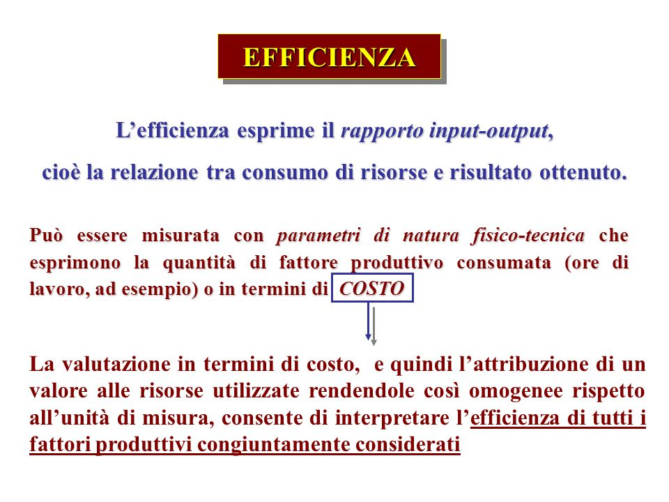EFFICIENZA L'efficienza esprime il rapporto input-output,