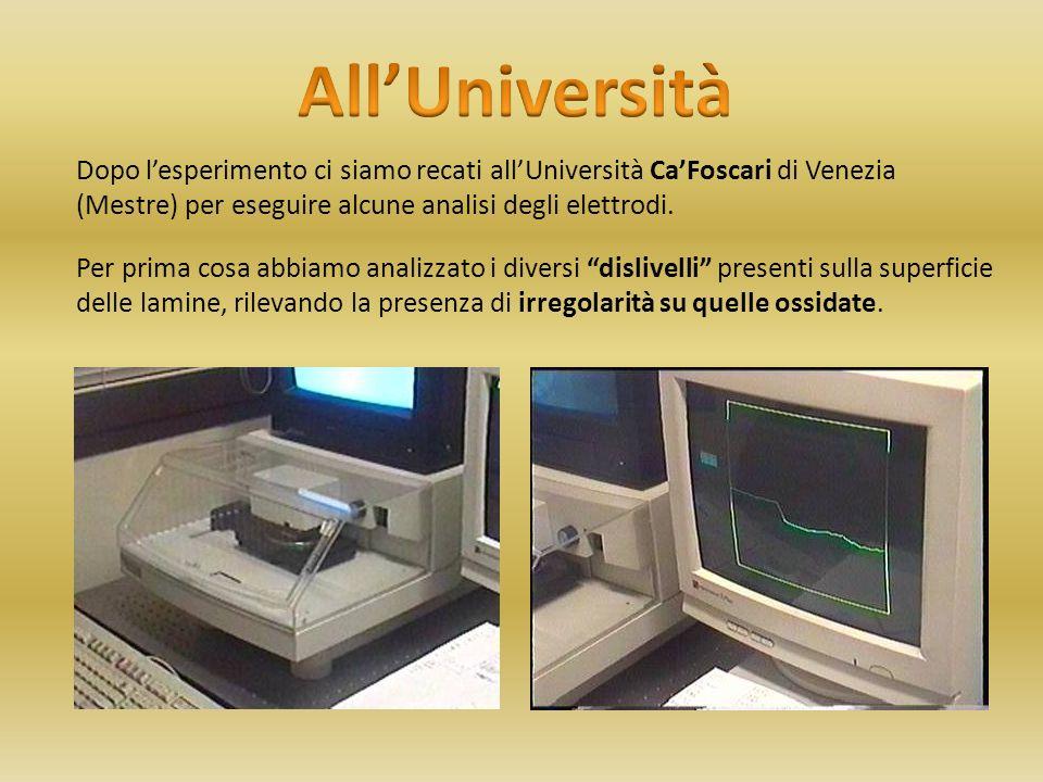 Dopo l'esperimento ci siamo recati all'Università Ca'Foscari di Venezia (Mestre) per eseguire alcune analisi degli elettrodi.