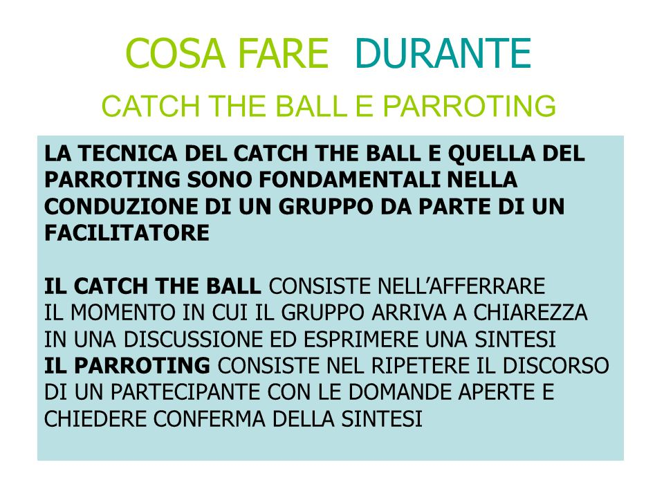 CATCH THE BALL E PARROTING