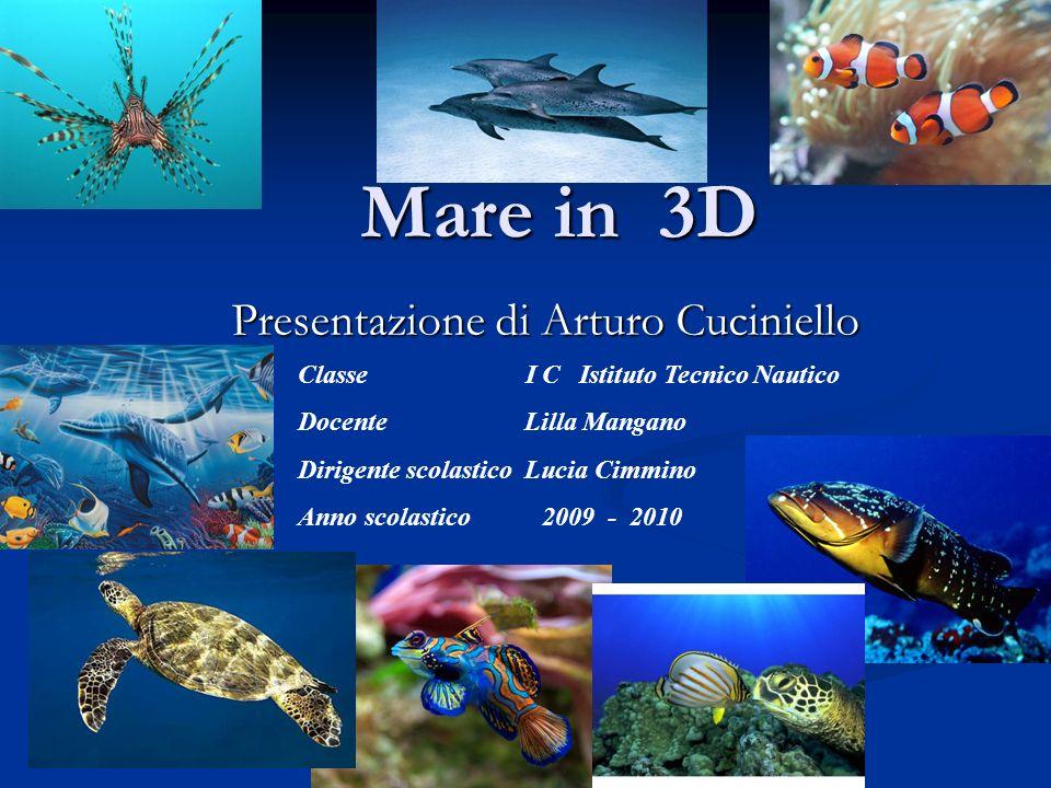 Presentazione di Arturo Cuciniello